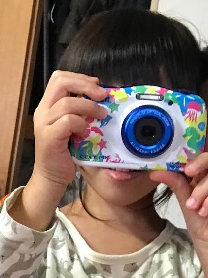 f:id:fugufugufugu:20161103223408j:plain