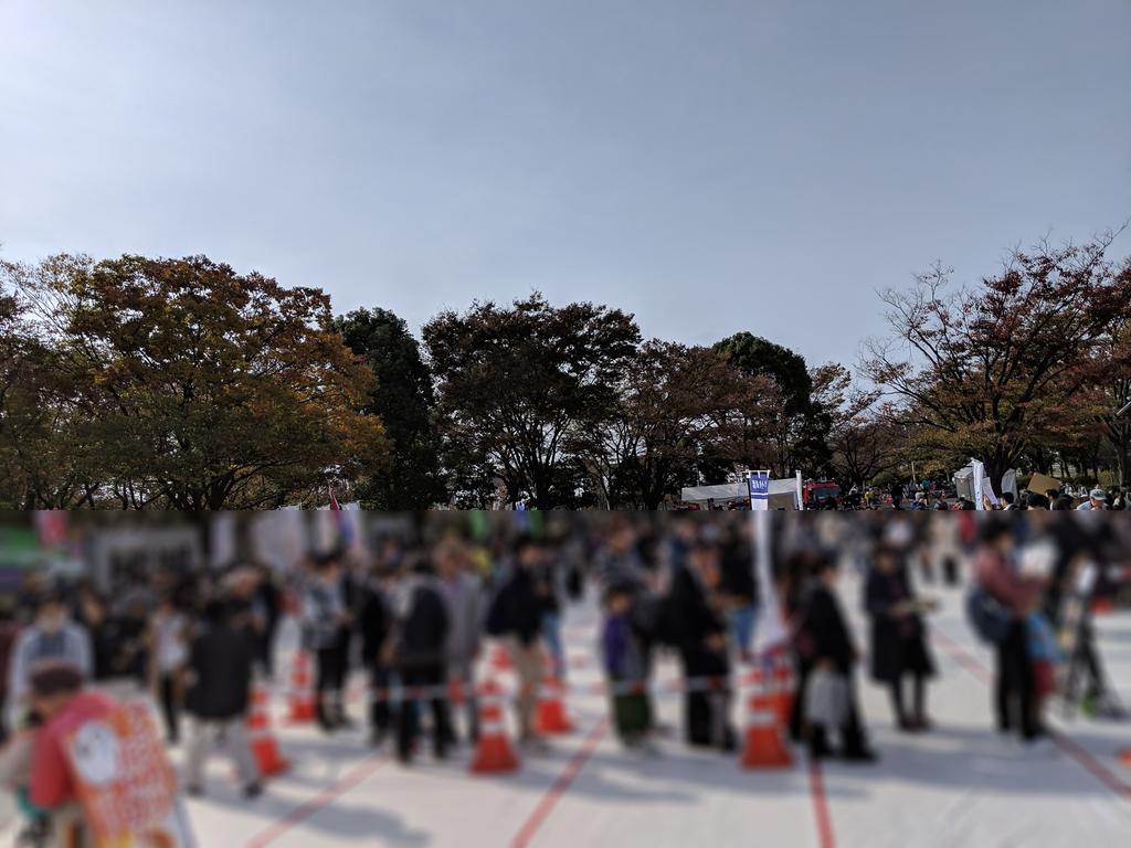 f:id:fugufugufugu:20181118222527j:plain